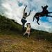 ME N ME BABYS .. JUMP