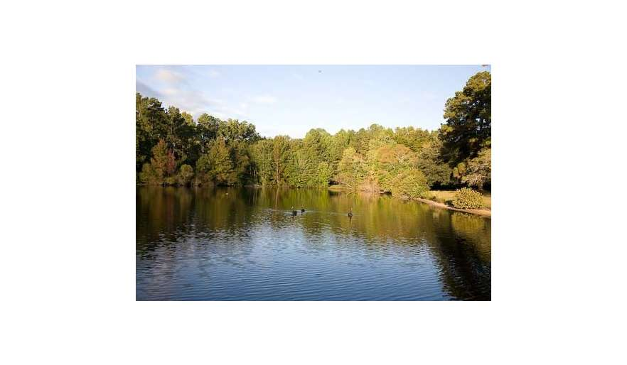 The pond is approximately 8 acres, completely private. This is a view to the west, taken from our dock.