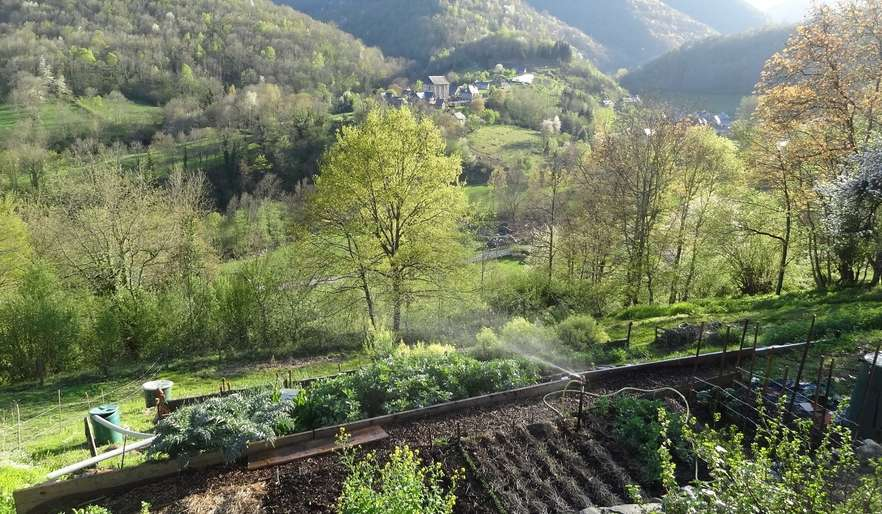Our vegetable garden and view