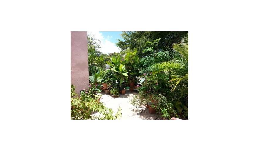 Second story garden terrace