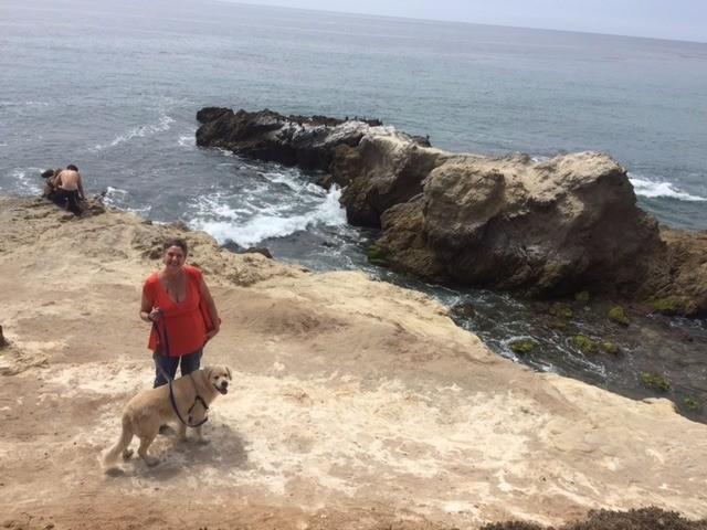 coastal management essay