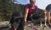Hiking with Buddy & Bailey