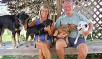 We cared for these four dogs, all rescued from the streets, on the Caribbean island of Vieques, Puerto Rico.