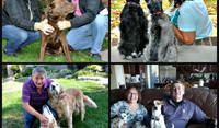 Family portraits of Love