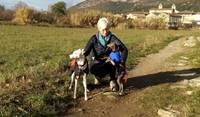 Angel and Lovely in Cevennes France