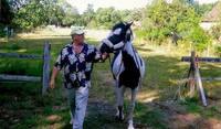 helping a neighbor moving a young Irish Cob mare from the paddock to the barn for the evening...