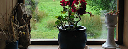 window_sill_01